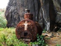 metallstruktur i natur Royaltyfria Bilder