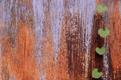 Metalltür in den Rost- und Grünblättern Lizenzfreies Stockfoto