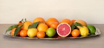 Metallteller mit verschiedenen Arten von Zitrusfrüchten Lizenzfreies Stockfoto