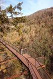 Metallvägen över den Okatse kanjonen i vinter, Georgia Fotografering för Bildbyråer