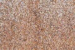 Metallwandblech Der Blattrost ist als kleine Punkte und Tupfen sichtbar Stockbilder