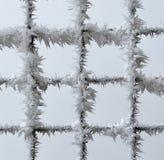 Metallzaun bedeckt mit Frost Lizenzfreie Stockfotos