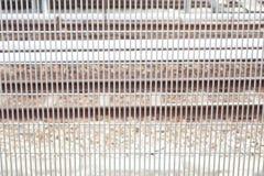Metallzaun der Bahnstation Stockbild