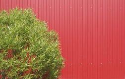 Metallzaun und grüner Busch Stockbild