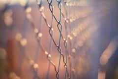 Metallzaundetail Abstrakter Begriff Stockfotografie