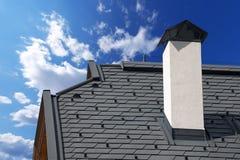 Metalu dach z Śnieżnymi strażnikami Obraz Stock