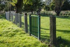 Metalu grille ogrodzenie z zieloną bramą w zielonych otoczeniach obraz royalty free