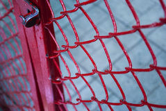 Metalu grille z kędziorkiem Fotografia Stock