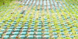 Metalu kwadrat z trawą dla parkować Zakończenie Zdjęcie Royalty Free