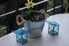 metalu kwiatu garnek z wiatraczkiem, rośliny i świeczki na s zdjęcia royalty free