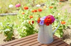 Metalu miotacz pełno jaskrawy coloured kwiaty zdjęcie stock