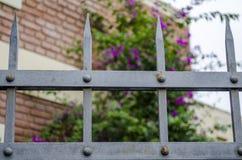 Metalu ogrodzenie Obraz Royalty Free