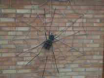 metalu pająk na ściany z cegieł czerni zdjęcia royalty free