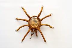 Metalu pająk z obmurowanym clockwork na białym tle, steampunk styl obrazy royalty free