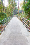 Metalu schody z poręczami prowadzi w dół baldachimu przejście, c Obrazy Royalty Free