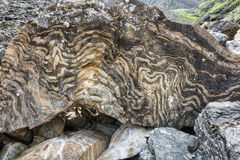 Metamorphic rock with a layered texture Royalty Free Stock Photos