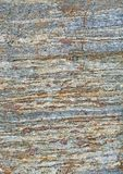 Metamorphic rock surface showing granates and bands of biotite Stock Photography