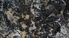 Metamorphic Stone Texture. And wallpaper with a contrasting mix of black, gray, white and brown minerals Stock Images