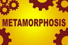 Metamorphosis formation concept vector illustration