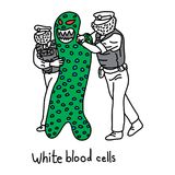 Metaphor function of white blood cell to protect the body agains. T both infectious disease and foreign invaders vector illustration sketch hand drawn with black Royalty Free Stock Photography