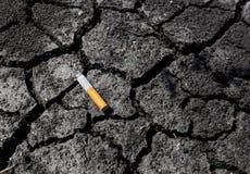 Metaphor of skin. The metaphor for bad skin of smokers Royalty Free Stock Photo