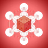 Metatron`s cube with platonic solids - hexahedron. On red background Royalty Free Stock Images