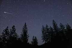 Meteor fireball. Over trees, Oregon, Ashland, Cascade Siskiyou National Monument, Taken 05.12, Copyright David Hoffmann stock image