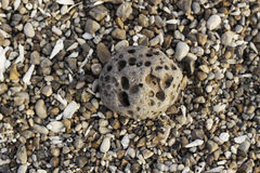 Meteorite Royaltyfri Fotografi