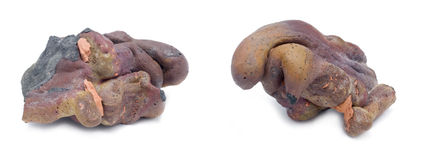 Meteorite di Podkamennaya Tunguska Immagine Stock