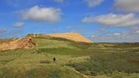 90 meter high sand dune at the west coast of Denmark. Rubjerg Knude. Stock Photos