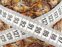 In meter measure pineapple Royalty Free Stock Photos