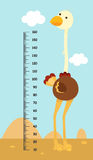 Meter wall with ostrich. illustration stock illustration