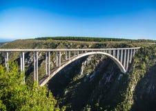 216 meters hoge Bloukrans-Rivierbrug bij de Oostelijke Kaap van Zuid-Afrika Royalty-vrije Stock Foto