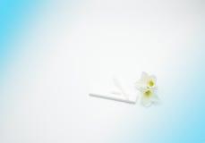 Methamphetamintest mit Plastiktropfenzähler und weißer Blume auf weißem und blauem Hintergrund mit Kopienraum, addieren gerade Ih Stockbilder