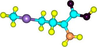 Methionine acid molecule isolated on white Royalty Free Stock Image