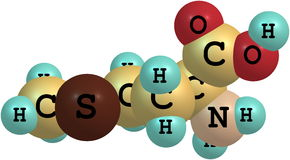 Methionine acid molecule isolated on white Royalty Free Stock Photos