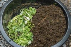 Method to feeding earthworms Stock Photography