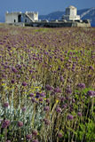 Methoni Castle. At sunny summer day, purple weed in foreground, blurred hills in background Royalty Free Stock Photos
