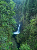 Metlako Falls. The beautiful metlako falls along the eagle creek trail in the Columbia Gorge Royalty Free Stock Photography