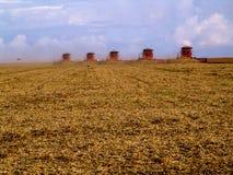 Mass soybean harvesting. Meto Grosso, Brazil, March 01, 2008. Mass soybean harvesting at a farm in Mato Grosso Royalty Free Stock Photos