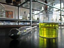 Metr w laboratorium dla uryny Zdjęcia Royalty Free