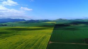 Metragem aérea de campos vegetados em África do Sul vídeos de arquivo