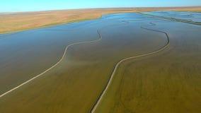 Metragem aérea do arroz que cresce NSW vídeos de arquivo