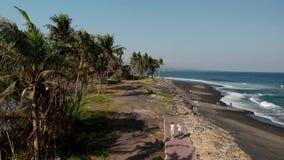 a metragem aérea do voo do zangão 4K de pares novos na areia preta selvagem encalha Ilha de Bali filme