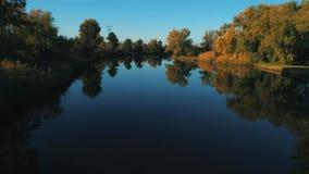 Metragem aérea do zangão Baixo voo sobre o rio calmo no por do sol do outono vídeos de arquivo