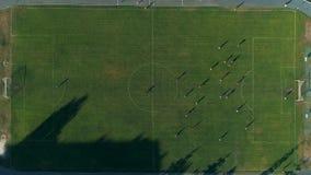 Metragem aérea do zangão Mosca sobre jogadores de futebol no campo video estoque