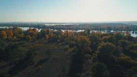 Metragem aérea do zangão Voo sobre a floresta do outono ao rio filme
