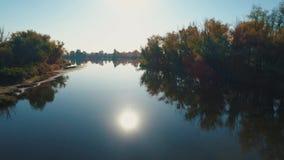 Metragem aérea do zangão Voo sobre o rio calmo entre a floresta filme