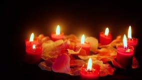 A metragem do dia de são valentim feliz com queimadura e flor da vela aumentou as pétalas vídeos de arquivo
