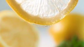 Metragem do movimento lento do close up do mel que goteja lentamente da fatia backlit fina do limão filme